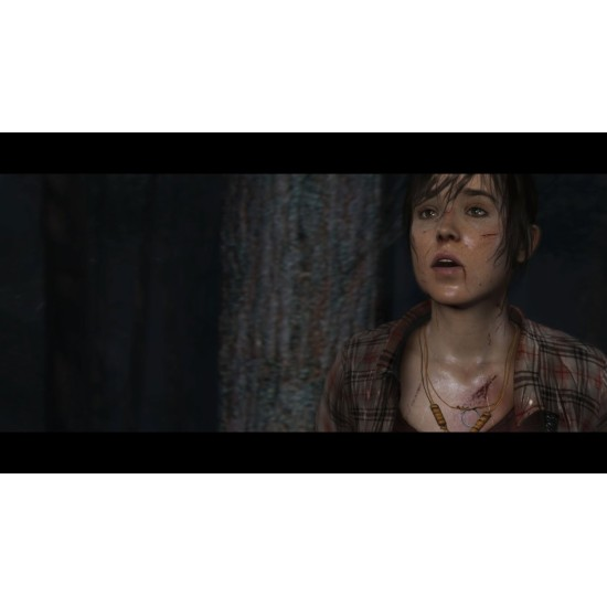 The Heavy Rain and Beyond Two Souls Collection | PS4
