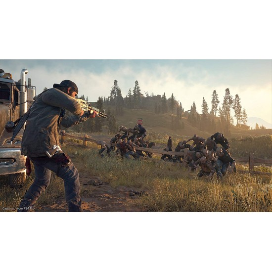 Days Gone - Collectors Edition - PlayStation 4